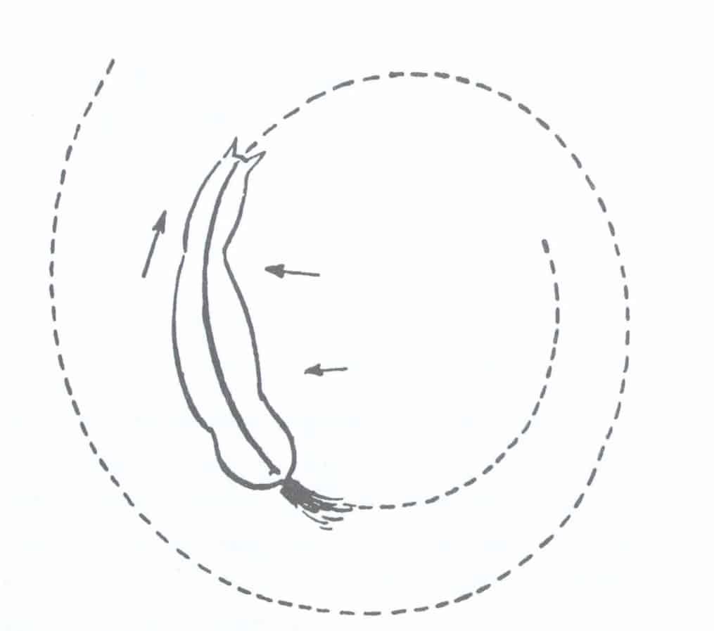 Agrandir le cercle avec la jambe intérieure