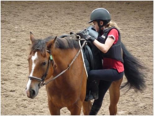 Se hisser lourdement sur le dos du cheval tire sur son garrot et le déséquilibre