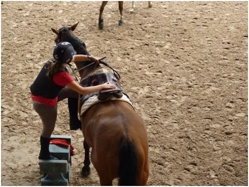 Un montoir, un plot facilite la tâche du cavalier et soulage le dos du cheval