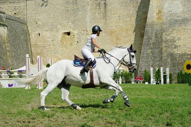 Ici la cavalière regarde sa trajectoire, la courbe est harmonieuse et le cheval est maintenu dans un bon équilibre