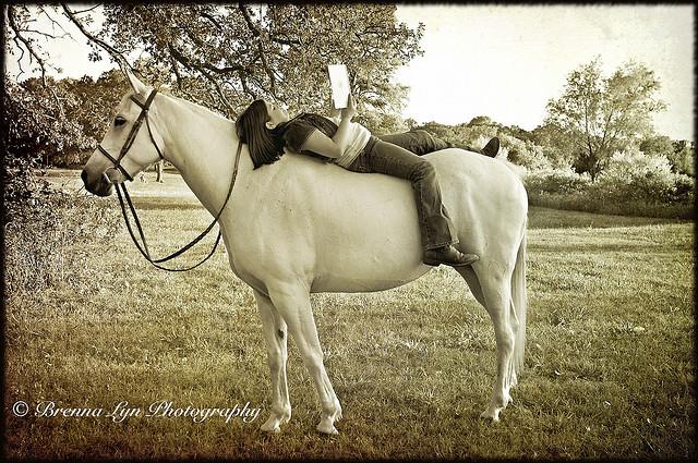 Faites confiance à votre cheval et il vous laissera de magnifiques souvenirs comme celui-ci