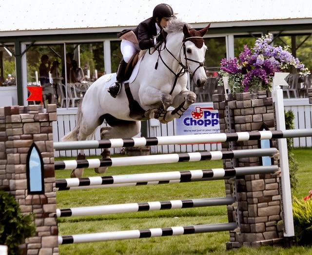 Un cheval avec un bon moral restera volontaire et disponible